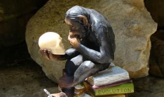 ¿Puede un católico aceptar la teoría de la Evolución?