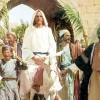 «¡Bendito el que viene en el nombre del Señor!»