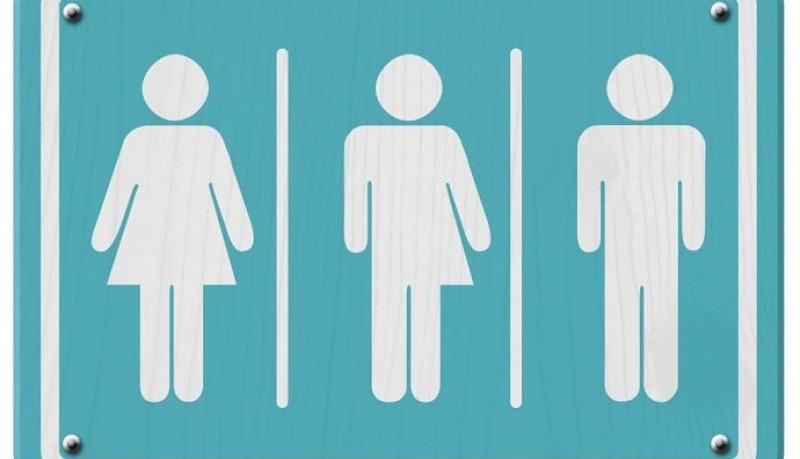 Experta explica peligros y errores del proyecto de identidad de género en Chile