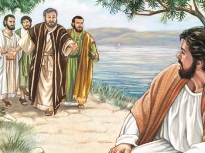 «He ahí el Cordero de Dios»