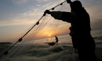«Venid conmigo, y os haré llegar a ser pescadores de hombres»