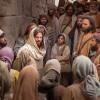 «Quien cumpla la voluntad de Dios, ése es mi hermano, mi hermana y mi madre»