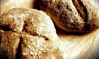 «El pan que yo le voy a dar, es mi carne por la vida del mundo»